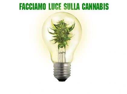 cannabis droghe leggere