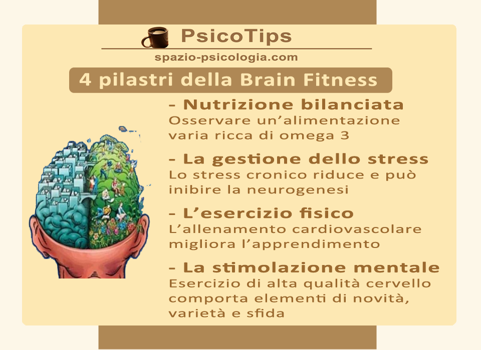 brain-training-consigli